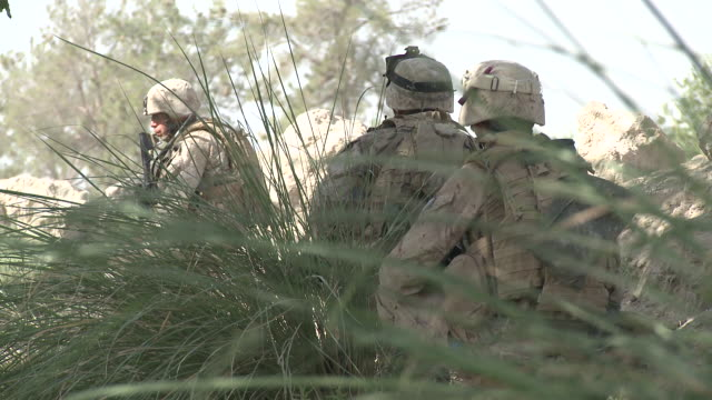 a u.s. marine patrol is concealed as they take a break beside a stream. - helmand stock videos & royalty-free footage