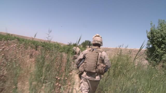 u.s. marine riflemen use a path through a poppy field. - provinz helmand stock-videos und b-roll-filmmaterial