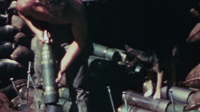 vídeos de stock e filmes b-roll de s marine standing in ammo dump holding field artillery shell in size comparison to small dog sitting on stack of artillery shells marine shaking... - fuzileiro naval