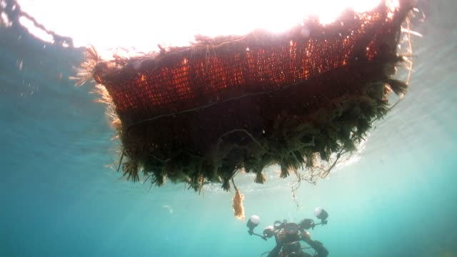 marine waste floating on the surface - taipei stock videos & royalty-free footage