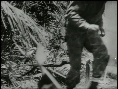 vidéos et rushes de marines & 27th infantry regiment soldiers advancing inland, throwing grenade, firing rifles, m1919 browning machine gun, mortars, explosions,... - infanterie