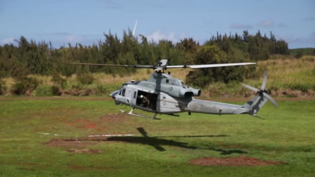 us marines conduct jungle patrols and aerial reconnaissance drills during exercise bougainvile i at us army kahuku training area hawaii march 25 2019 - kahuku stock videos & royalty-free footage