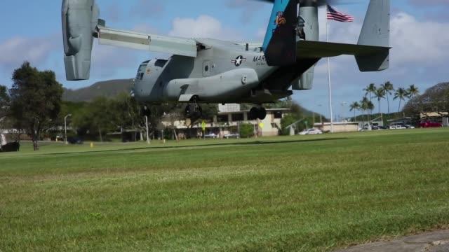 vídeos y material grabado en eventos de stock de us marines conduct simulated tactical recovery of aircraft personnel and a combat search and rescue scenario training aboard marine corps base hawaii... - mamífero ungulado
