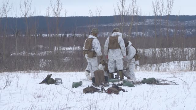 us marines from kilo company 3rd battalion 8th marine regiment conduct a joint livefire training exercise at fort greely alaska march 15 as part of... - military exercise stock videos and b-roll footage
