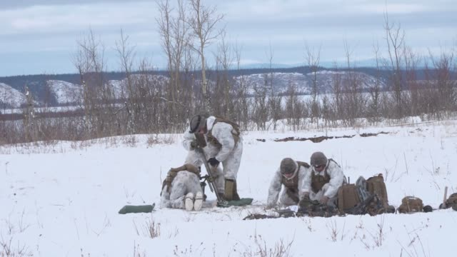 marines from kilo company, 3rd battalion, 8th marine regiment, conduct a joint live-fire training exercise at fort greely, alaska, march 15, as part... - 連隊点の映像素材/bロール