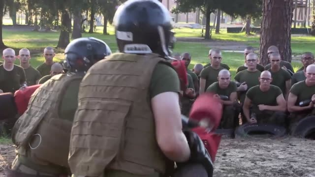 marines participate in close quarter combat and bayonet fighting skills during recruit training on parris island, marine corps recruit depot. pugil... - bayonet stock videos & royalty-free footage