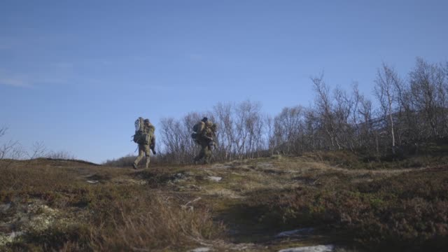 us marines together with norwegian coastal ranger conduct exercise platinum ren at fort trondennes harstad norway may 30 2019 - infanterie stock-videos und b-roll-filmmaterial