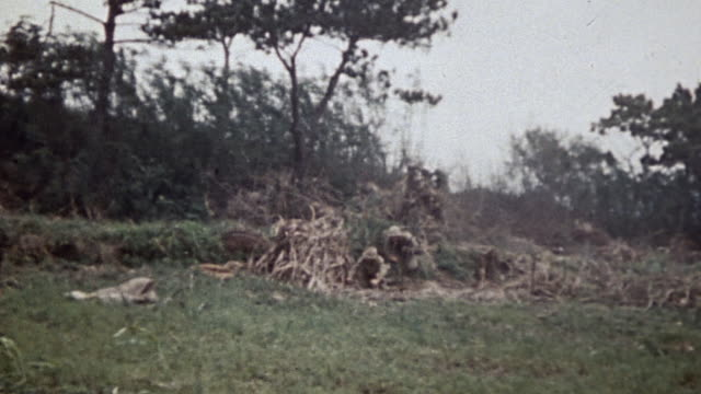 stockvideo's en b-roll-footage met marines using grenades and flamethrower to burn out bushes / okinawa, japan - bergrug