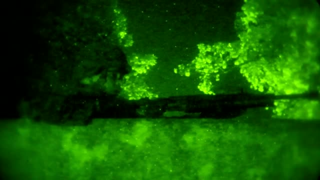 marines with 3rd law enforcement battalion iii marine expeditionary force provide security during a lowlight assault as part of a field training... - night vision stock-videos und b-roll-filmmaterial