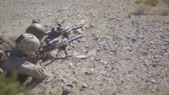 vídeos de stock e filmes b-roll de us marines with regimental surveillance and target acquisition company participated in a sniper field training exercise at fort irwin calif oct 2... - fuzileiro naval