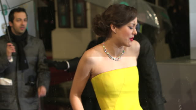 marion cotillard at ee british academy film awards 2013 red carpet arrivals at the royal opera house on february 10 2013 in london england - stone object stock videos & royalty-free footage