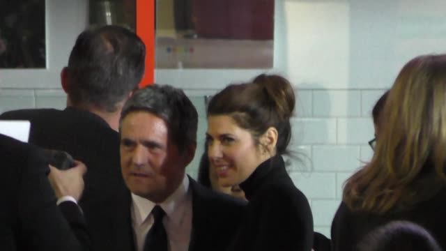 marisa tomei at the big short premiere at afi fest at tcl chinese theatre in hollywood in celebrity sightings in los angeles, - marisa tomei stock videos & royalty-free footage