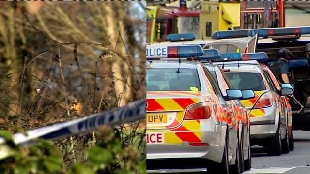 vídeos de stock, filmes e b-roll de lawful killing verdict returned split screen showing police cordon tape at sycamore kiling / police vehicles at saunders killing - árvore de folha caduca