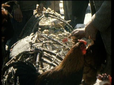 Market seller and customer bartering over chicken Kabul; 1989