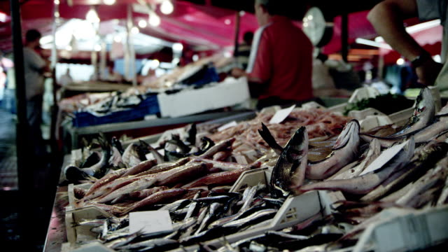 market stand on an italian fish market - fischer stock-videos und b-roll-filmmaterial