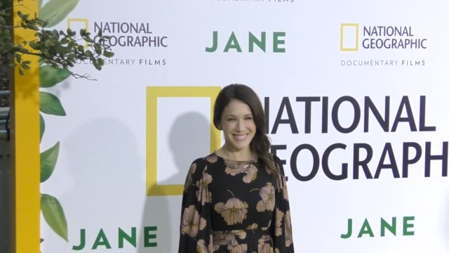 marla sokoloff at the premiere of national geographic documentary films' 'jane' at the hollywood bowl on october 09 2017 in los angeles california - marla sokoloff stock videos & royalty-free footage