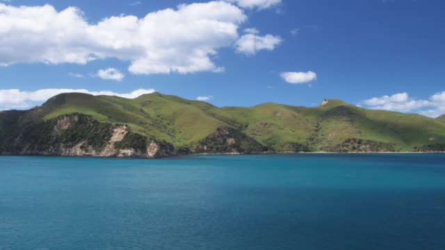 WS, PAN, Marlborough Sounds, South Island, New Zealand