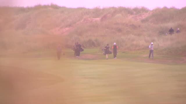 marram grass w/ morning dew water drops attached moving w/ wind rack focus ws three unidentifiable male golfers exclusive world class resort coastal... - links golf stock videos & royalty-free footage