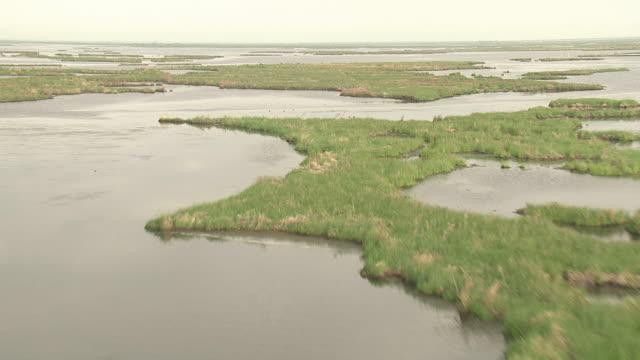 marsh islands cover much of a mississippi river delta area. - mississippi flod bildbanksvideor och videomaterial från bakom kulisserna