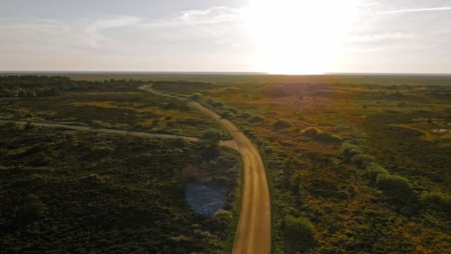 aerial marsh landscape at sunset - denmark stock videos and b-roll footage