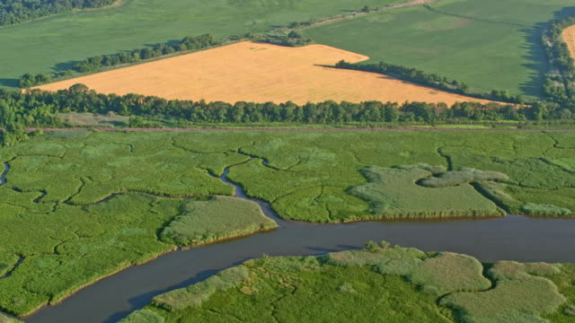 AERIAL Marshland in the countryside