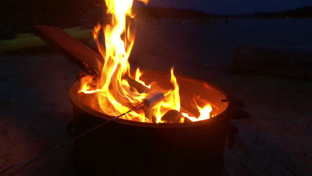 marshmallows catching fire - marshmallow video stock e b–roll