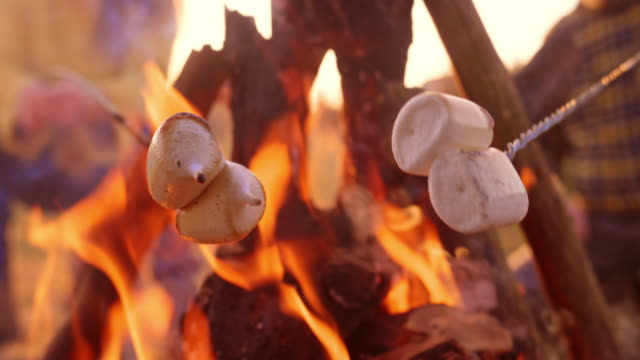 slo mo marshmallows melting while being roasted over the campfire - camp fire stock videos & royalty-free footage