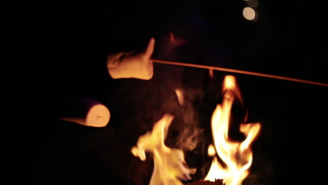marshmallows over fire - marshmallow video stock e b–roll