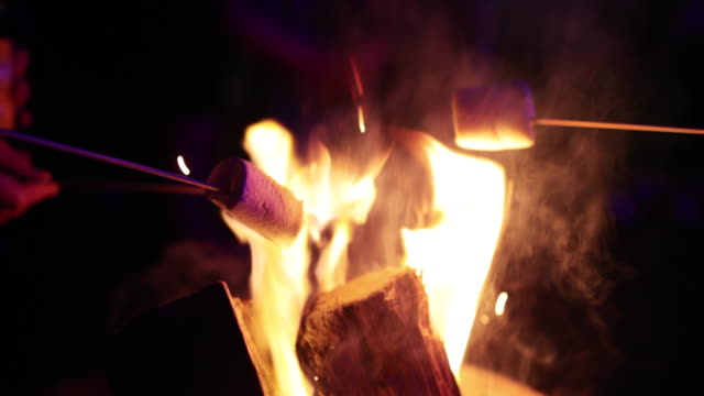 marshmallows over fire - grilled stock videos and b-roll footage