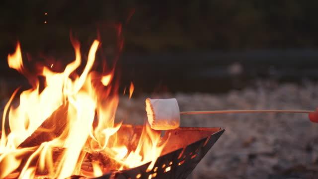 vidéos et rushes de guimauves torréfaction sur un feu de camp - activité de plein air