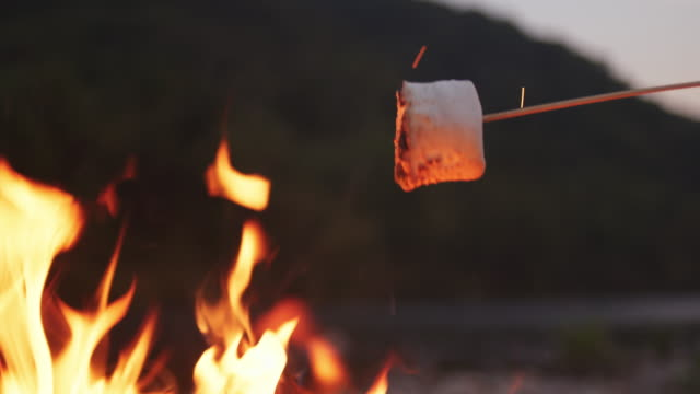 marshmallows rösten am lagerfeuer - lagerfeuer stock-videos und b-roll-filmmaterial