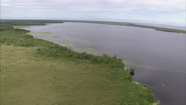 a marshy area lies next to an african coastal inlet. - inlet stock videos & royalty-free footage