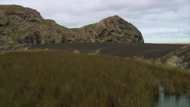 AERIAL Marshy field near rock formations, and the rich soil and grassy field surrounding / Otago, New Zealand