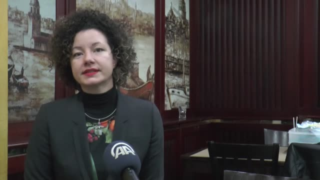 martha bissman an independent member of the austrian parliament speaks in an interview in vienna austria on january 23 2019 austria should not turn... - diplomacy stock videos and b-roll footage