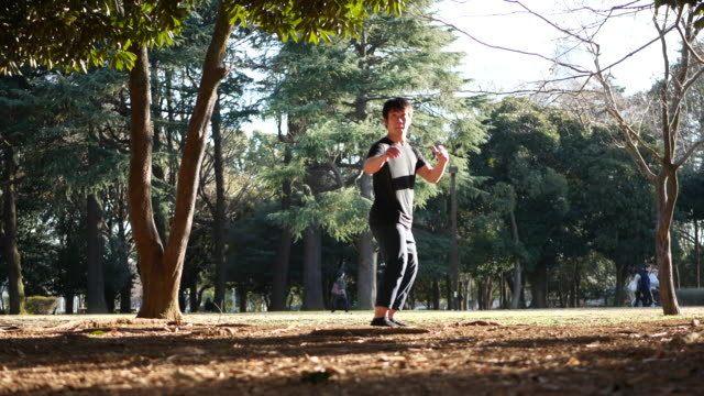 martial artist in park - kicking stock videos & royalty-free footage