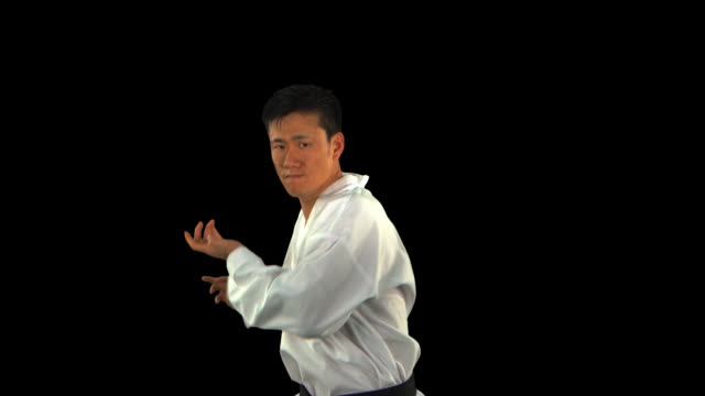 martial arts master punching/kicking forward - this clip has an embedded alpha-channel - pre matted stock-videos und b-roll-filmmaterial
