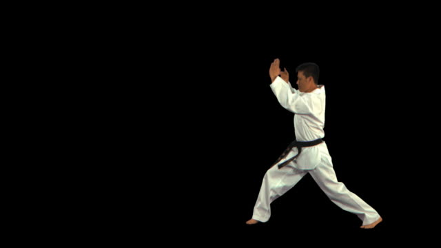 martial arts master punching/kicking to side - this clip has an embedded alpha-channel - pre matted stock-videos und b-roll-filmmaterial