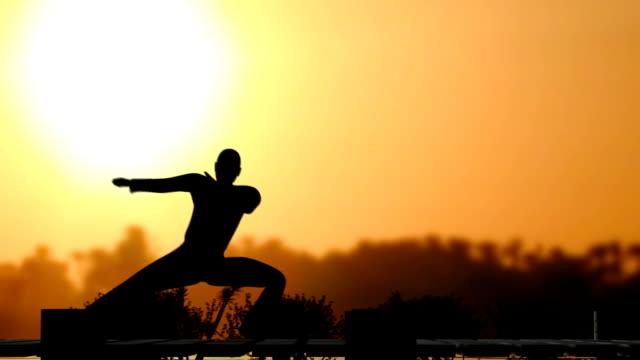 vidéos et rushes de (hd1080) arts martiaux, artiste en face du soleil - karaté