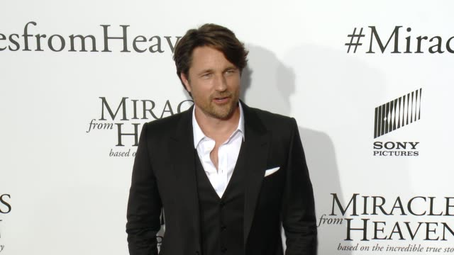 martin henderson at miracles from heaven los angeles premiere at arclight cinemas on march 09 2016 in hollywood california - arclight cinemas hollywood stock videos & royalty-free footage