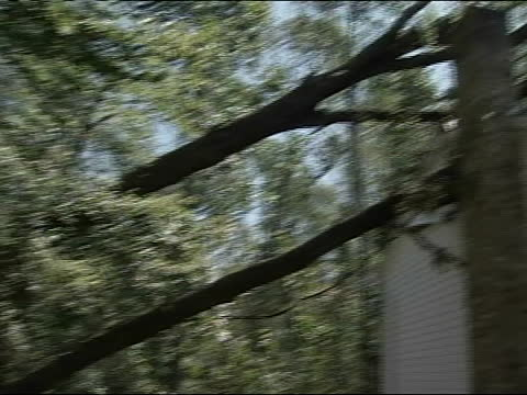 martin o'malley to damaged house with trees on roof as he tours aftermath of hurricane irene - vermont state house stock videos & royalty-free footage