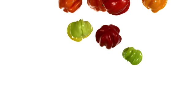 Martinique Hot Pepper, capsicum annuum falling against With Background, Slow Motion