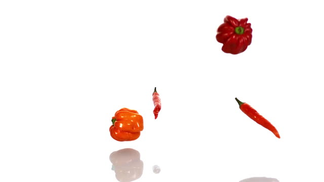 Martinique Hot Peppers with Red and Green Chili Peppers, capsicum annuum falling against With Background, Slow Motion