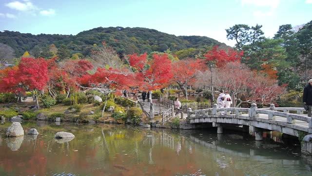 maruyama park, kyoto, japan - kyoto prefecture stock videos & royalty-free footage