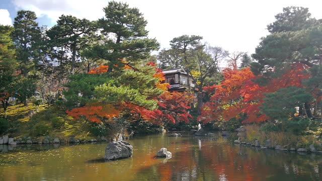 maruyama park, kyoto, japan - kyoto stock videos and b-roll footage