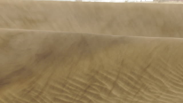 mas palomas dunes a windy day - grand canary - desert stock videos & royalty-free footage