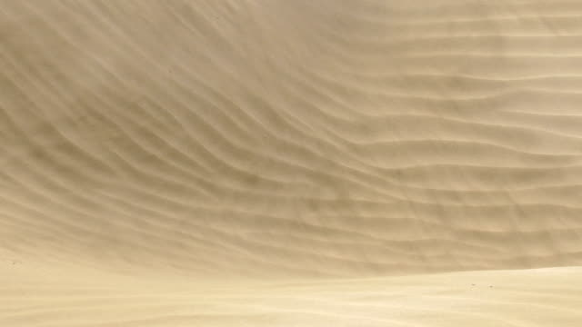 mas palomas dunes a windy day - grand canary - sand stock videos & royalty-free footage