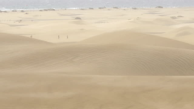 mas palomas dunes a windy day - grand canary - sandstorm stock videos & royalty-free footage