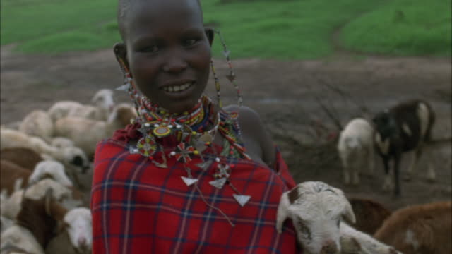 a masai woman holds a young goat in her arms. available in hd. - masai stock videos and b-roll footage