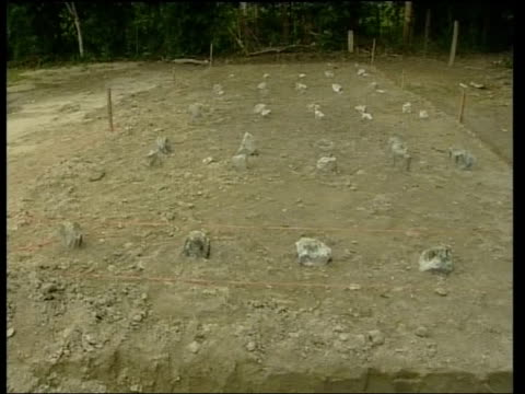 tgv mass grave for 22 muslim protesters - mass grave stock videos and b-roll footage