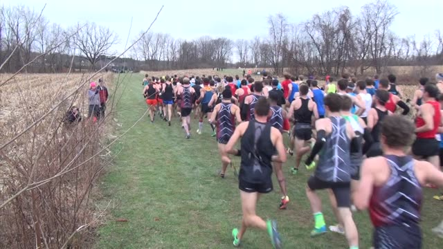 vidéos et rushes de mass of runners head out and on course in cross country race - salmini